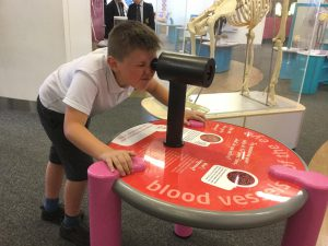 Year 6 visit 'We the Curious Museum'