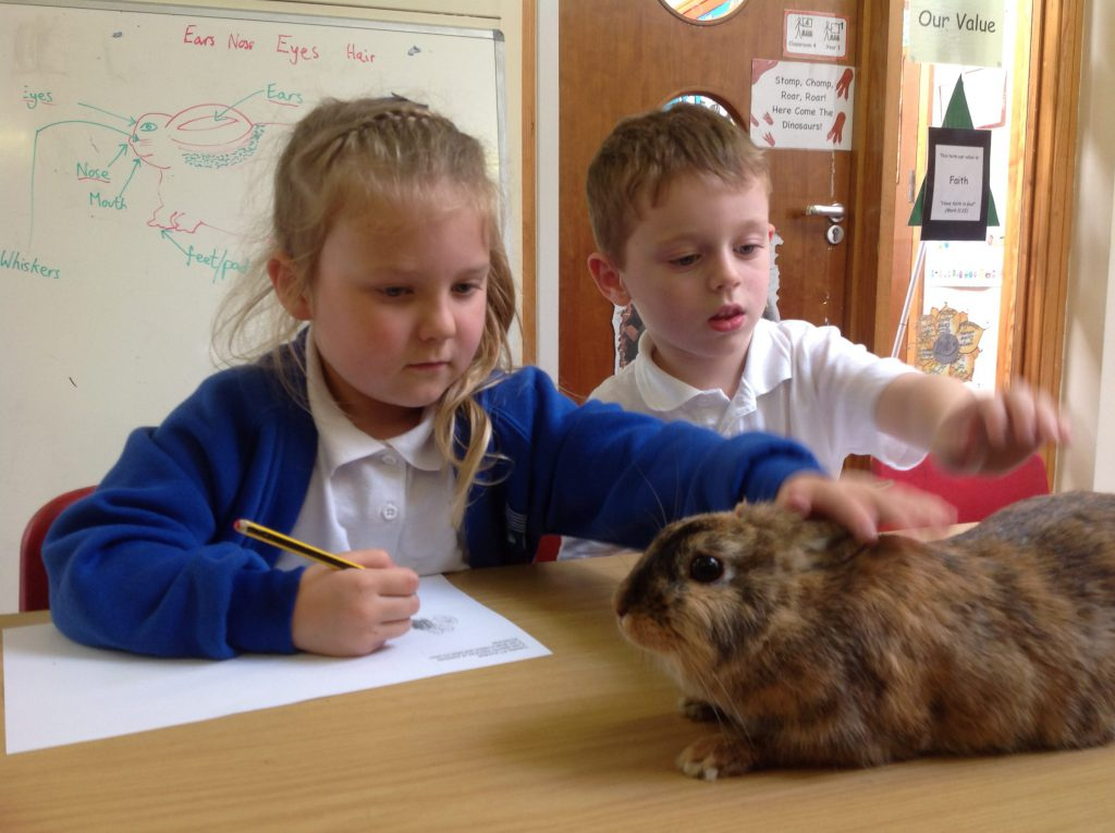 More special visitors in Year 1 Science!