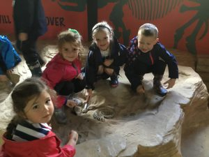 Year 1 Trip to Birdland