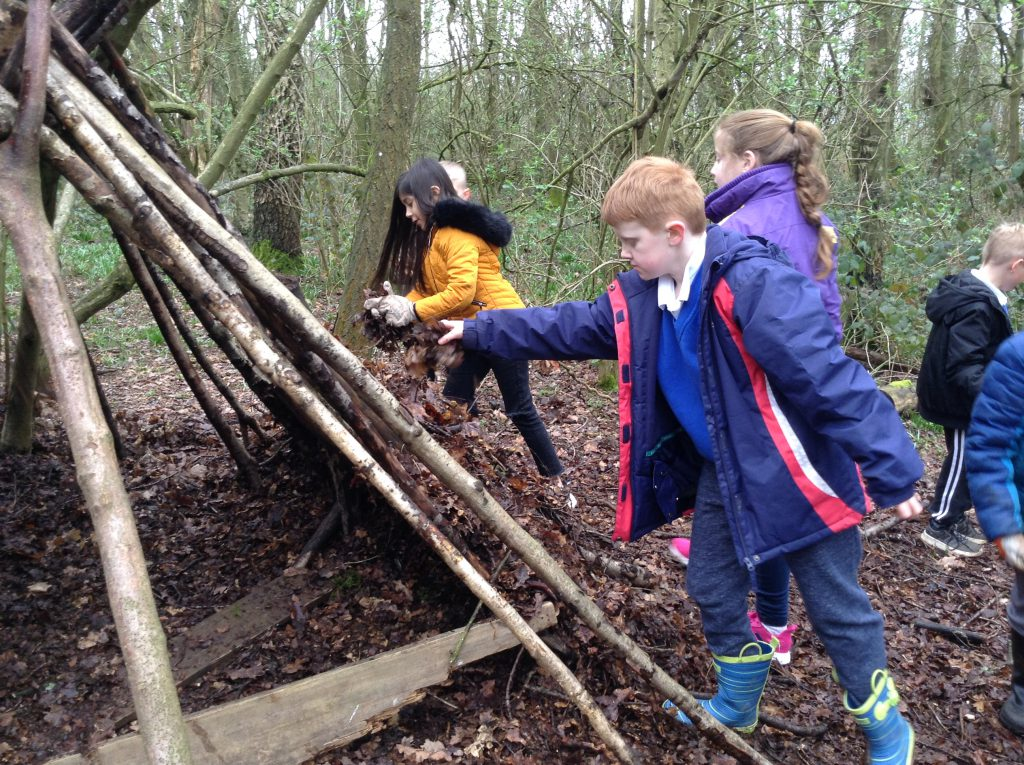 Anglo-Saxon Trip to Bishops Wood Centre