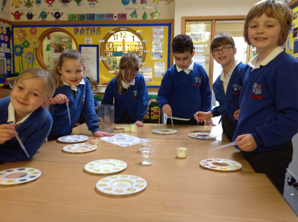 Year three science afternoon